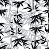 безшовное предпосылки флористическое Бамбуковая картина лист Стоковое Изображение RF