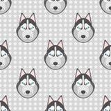 Безшовное backgound Картина с собаками лайкой и звездами на сером цвете Стоковое фото RF