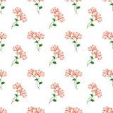 Безшовное ora завода лист цветка фонового изображения красочное ботаническое Стоковое Изображение RF