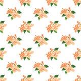Безшовное ora завода лист цветка фонового изображения красочное ботаническое Стоковые Изображения RF