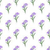 Безшовное pur завода лист цветка фонового изображения красочное ботаническое Стоковые Изображения RF