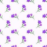 Безшовное pur завода лист цветка фонового изображения красочное ботаническое Стоковые Фотографии RF