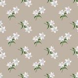 Безшовное whi завода лист цветка фонового изображения красочное ботаническое Стоковые Изображения RF