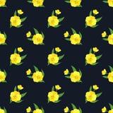 Безшовное yel завода лист цветка фонового изображения красочное ботаническое Стоковые Фотографии RF