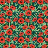 Безшовной флористической ботанической мак картины нарисованный рукой реалистический цветет зеленые бутоны листьев, темная предпос бесплатная иллюстрация