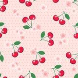 Безшовные вишни и цветение на предпосылке точки польки Стоковое Изображение RF