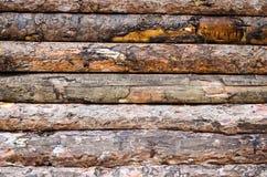 Безшовные деревянные планки Стоковое Изображение RF