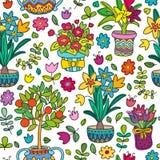 Безшовные заводы doodle картины в баках, флористической предпосылке Стоковое фото RF