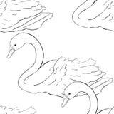 Безшовные заплывы птицы лебедя расцветки картины также вектор иллюстрации притяжки corel Стоковое Изображение RF