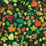 Безшовные листья осени vector предпосылка Стоковая Фотография