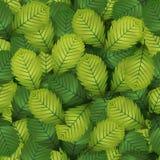 Безшовные листья Хейзл весны иллюстрация штока
