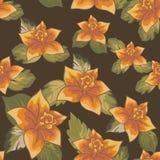 Безшовные картины с вектором цветков Стоковые Изображения RF