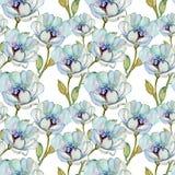 Безшовные картины с красивыми цветками Стоковое Изображение RF