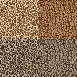 Безшовные картины с текстурой кожи Стоковые Фото