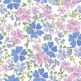 Безшовные картины с цветками акварели Стоковые Фото
