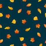 Безшовные листья осени картины на темной предпосылке Стоковые Изображения
