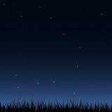 Безшовные ночное небо и трава Стоковое Изображение RF
