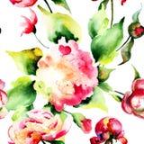 Безшовные обои с красивыми полевыми цветками Стоковая Фотография RF