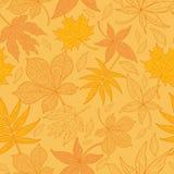 Безшовные сделанные по образцу кленовые листы Стоковые Фото
