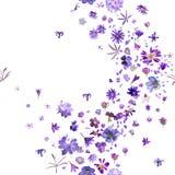 Безшовные фиолетовые цветки Стоковая Фотография RF