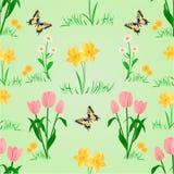 Безшовные цветки весны текстуры с вектором бабочки Стоковое Изображение
