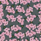 Безшовные цветки картины подняли бесплатная иллюстрация