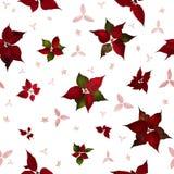 Безшовные цветки рождества Poinsettia Стоковые Фото