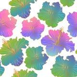 Безшовные цветочные узоры вектора Стоковое Фото