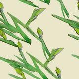 Безшовный бутон цветка картины Стоковые Фотографии RF