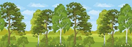 Безшовный горизонтальный ландшафт, лес лета Стоковые Изображения