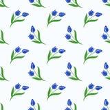Безшовный завод лист цветка фонового изображения красочный ботанический голубой Стоковые Фото