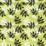 Безшовный зеленый цвет выходит предпосылка Стоковые Изображения RF