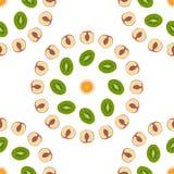 Безшовный киви предпосылки картины, апельсин, персик Стоковая Фотография