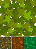 Безшовный комплект предпосылки кленовых листов бесплатная иллюстрация