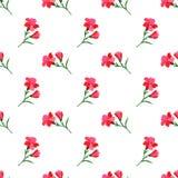 Безшовный красный цвет завода лист цветка фонового изображения красочный ботанический Стоковые Фото