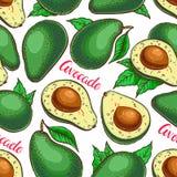 Безшовный красочный авокадо Стоковые Фото