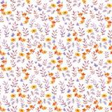 Безшовный ретро декоративный флористический образец Милые цветки, листья и ретро бабочки Aquarelle Стоковая Фотография