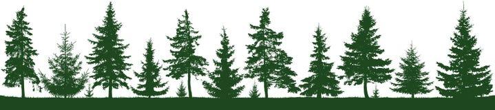Безшовный силуэт елей леса Parkland, парк, сад иллюстрация вектора