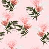 Безшовный тропический protea цветет и ладонь выходит картина на яркую розовую предпосылку бесплатная иллюстрация