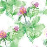 Безшовный цветочный узор абстракции акварели в винтажном стиле на белой предпосылке Эмулирование акварели вектора Стоковая Фотография