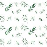 Безшовный цветочный узор акварели с зелеными листьями иллюстрация штока