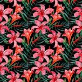 Безшовный цветочный узор акварели Стоковые Фото