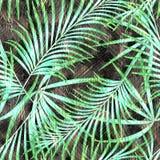 Безшовный цветочный узор акварели Стоковые Изображения