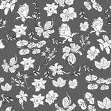 Безшовный цветочный узор в векторе с красивым цветком орхидеи иллюстрация вектора