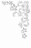 Безшовный цветочный узор, картина цветка Стоковое Фото