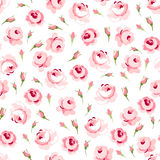 Безшовный цветочный узор с большими и маленькими розовыми розами Стоковое фото RF