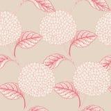 Безшовный цветочный узор с гортензиями Стоковые Изображения RF