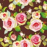 Безшовный цветочный узор с красивыми розами Бесплатная Иллюстрация