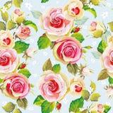 Безшовный цветочный узор с красивыми розами Иллюстрация вектора