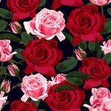 Безшовный цветочный узор с красными, розовыми и зелеными розами листьев на черной предпосылке иллюстрация штока